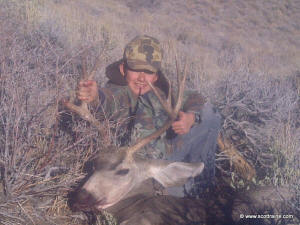 Steel's mule deer buck 2013